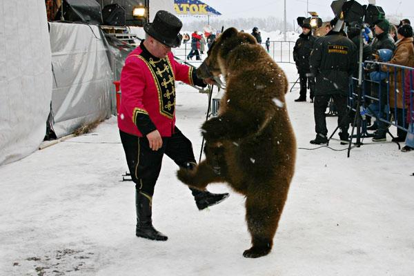 танцы с медведем